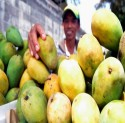 penjual buah.jpg